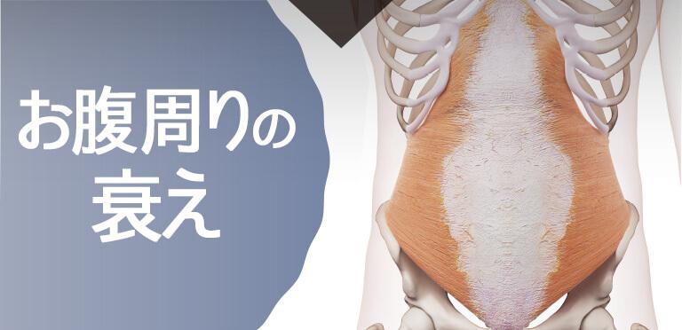 腹横筋の衰え
