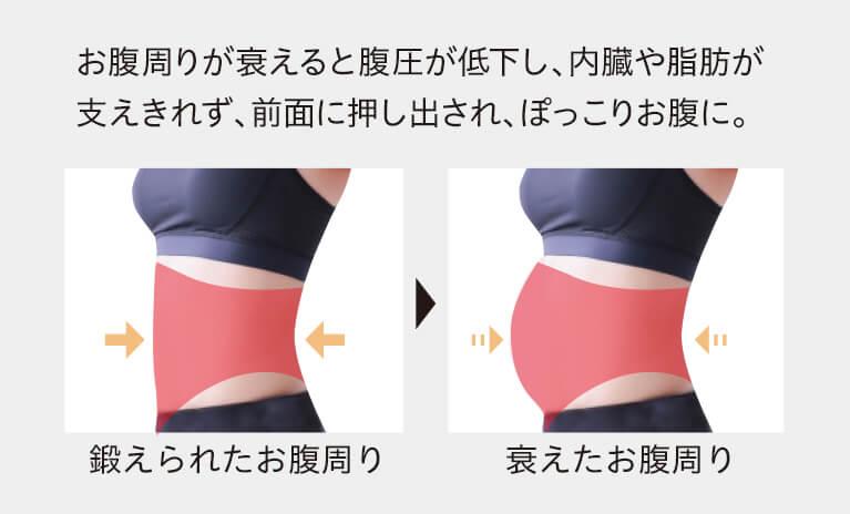 腹横筋が衰えると腹圧が低下し、内臓や脂肪が支えきれず、前面に押し出され、ぽっこりお腹に。