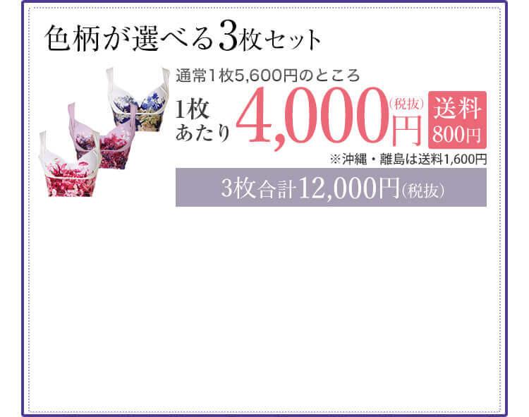色柄が選べる3枚セット 1枚あたり4,00円(税抜) 3枚合計12,000円(税抜) 送料無料