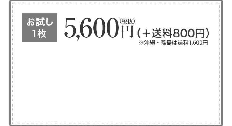 お試し1枚5,800円(税抜)+送料750円